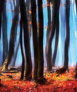 """Motive """"Landschaft"""""""