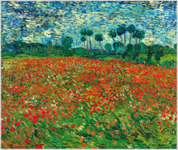 "Das Gemälde ""Mohnfeld"" von Vincent van Gogh aus dem Akustikbilder Katalog der Firma AkuTec"