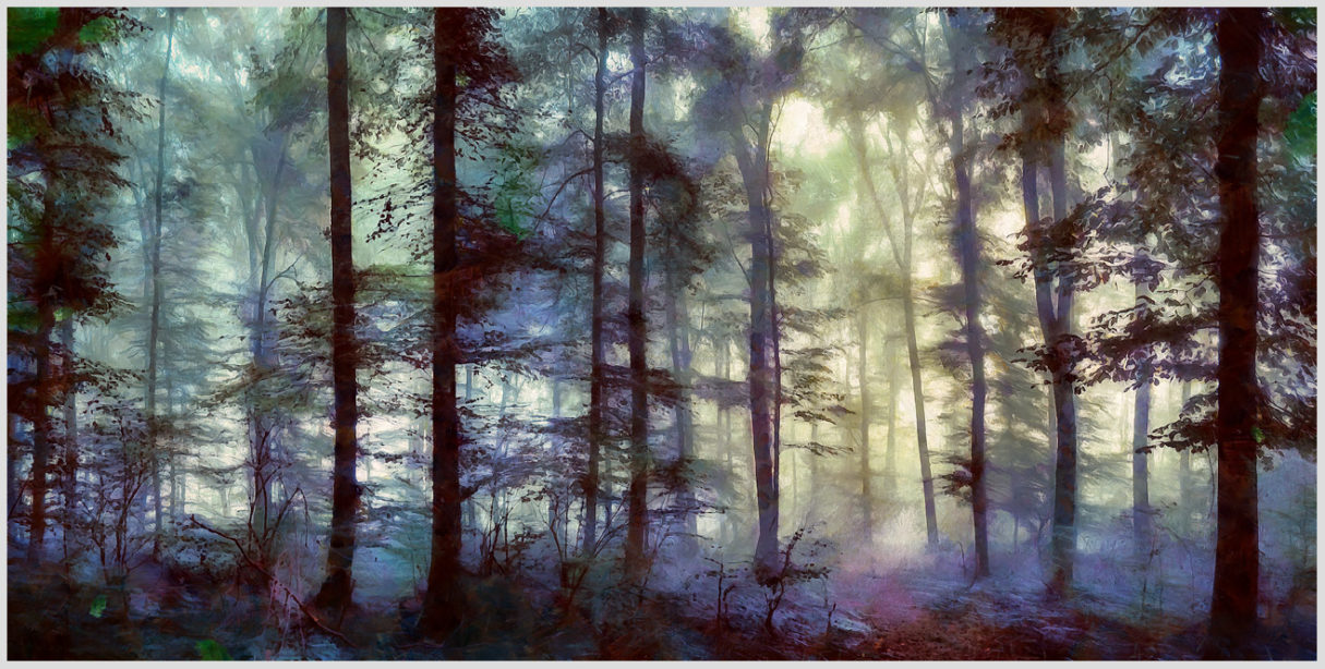 """Das Motiv """"Strange Day in the Wooz II"""" von Guido Mayr aus dem Akustikbilder Portfolio der Firma AkuTec"""